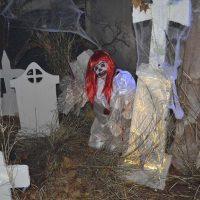 Ronda celebrará el domingo 31 de octubre la festividad de todos los Santos con actividades y una 'noche de Halloween'