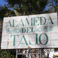 El Ayuntamiento prevé realizar mejoras en la Alameda del Tajo