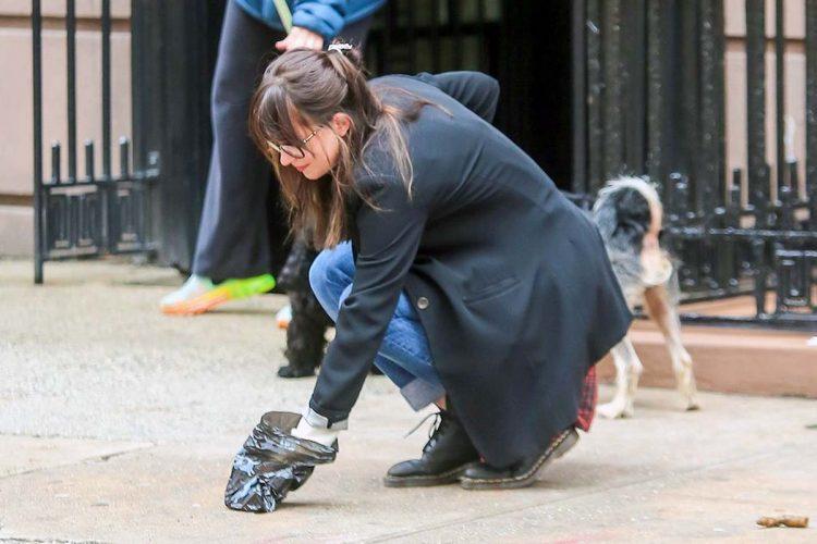 La Policía Local denuncia a doce propietarios de perros por llevarlos sueltos o no recoger sus excrementos
