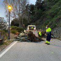 La Diputación restablece la entrada a Genalguacil tras un desprendimiento por las lluvias