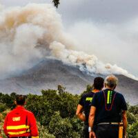 La Fiscalía presenta en el Juzgado de Ronda una denuncia por el incendio de Sierra Bermeja