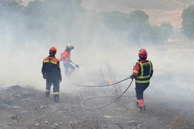 Intentan prender fuego por segunda vez y de madrugada al pinar de La Dehesa