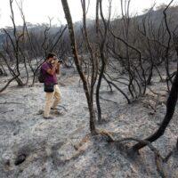El Gobierno de España declara Sierra Bermeja como zona catastrófica